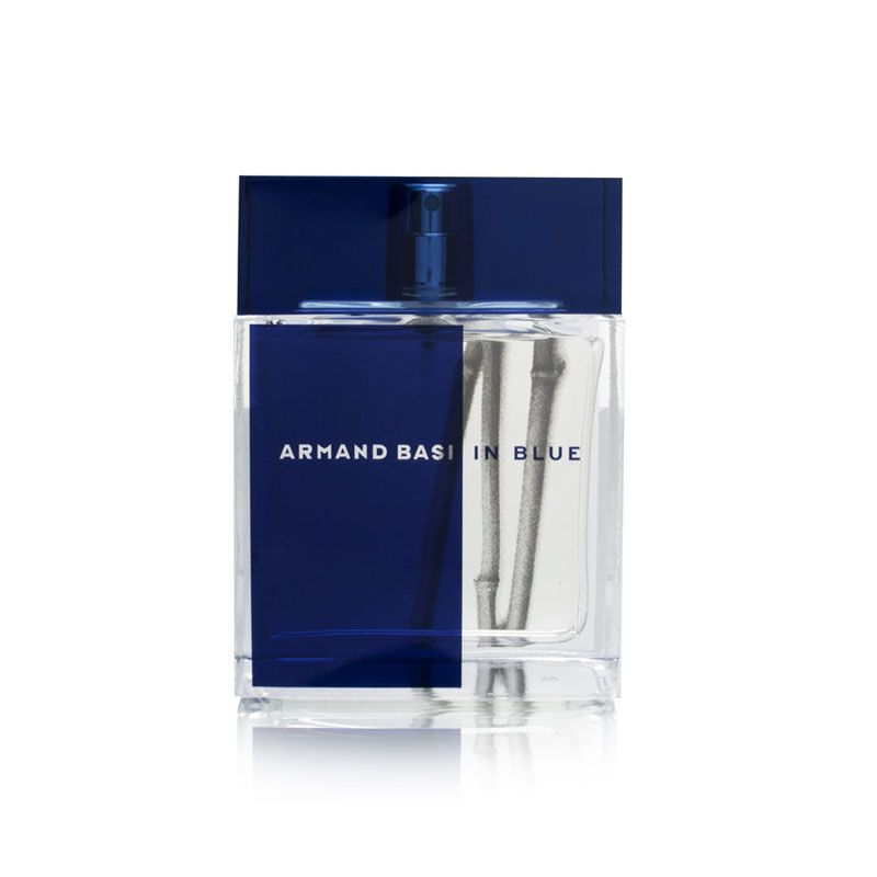 Armand Basi IN Blue test edt